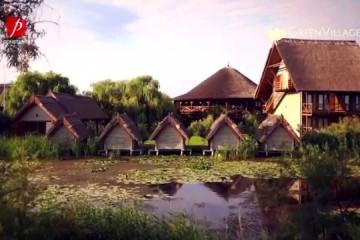 Green Village & Green Dolphin (Sfantu Gheorghe – Delta Dunarii)